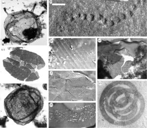 Mesoproterozoic